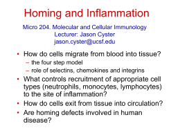 Homing and Inflammation - UCSF Immunology Program