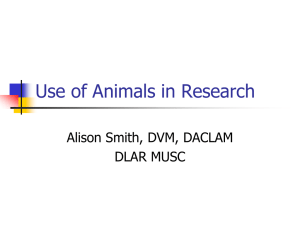 Use of Animals in Research