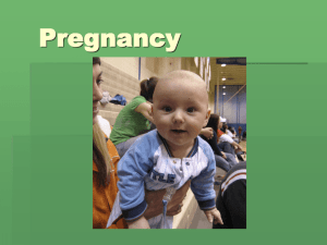Pregnancy Powerpoint Presentation