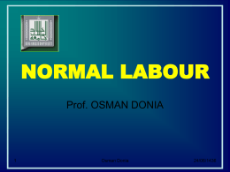 Normal-Labor-DrOsman