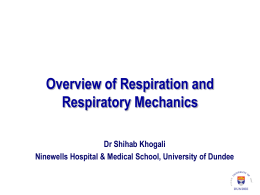 Respiratory-Physiology-Lecture