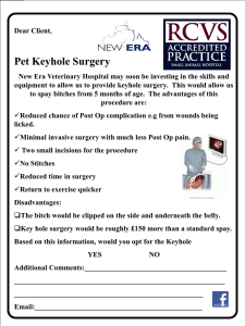 Key hole surgery - New Era Veterinary Hospital
