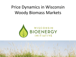Price Dynamics in Wisconsin Woody Biomass