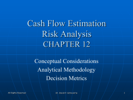 Cash Flow Estimation Risk Analysis