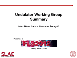 Summary on Undulator Working Group