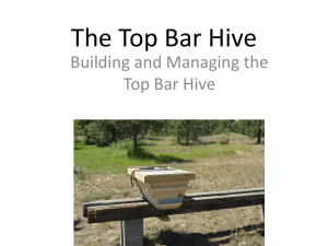 The Top Bar Hive by Jack Miller