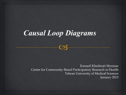 Causal Loop Diagrams
