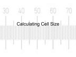 Calculating Cell Size