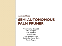 Semi Autonomous Palm Pruner