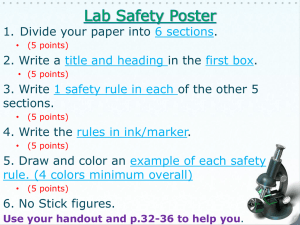 Safety Poster or Poem Directions