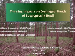 Experiment thinning in Eucalyptus in Brazil