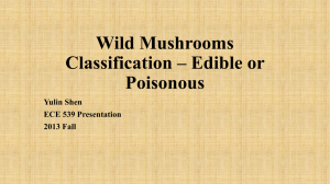 Wild Mushrooms Classification * Edible or Poisonous