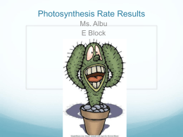 Photosynthesis Data E Block