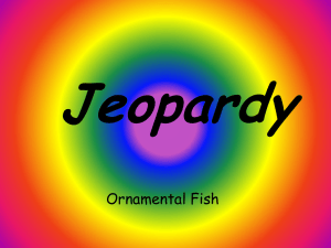 Fish Jeopardy Review