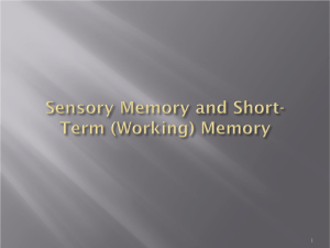 Sensory & Short-Term (or Working) Memory