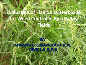 Evaluation of Flair 50 EC Herbicide for Weed Control in Rice