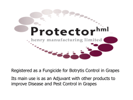Protector hml Powerpoint presentation