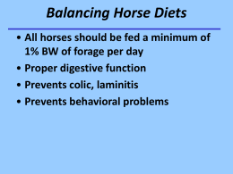 Powerpoint on Balancing Horse Diets