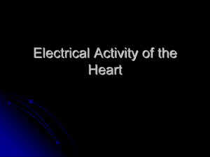 1 - Electrical Activity of the Heart