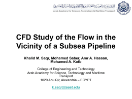 CFD Study of the Flow in the Vicinity of a Subsea