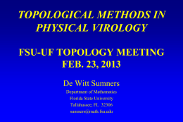 Topological Methods in Physcial Virology