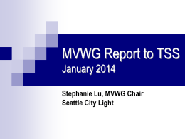 MVWG 2014-1 Report to TSS Presentation