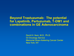 Beyond trastuzumab – the potential roles for lapatinib