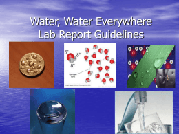Water, Water Everywhere Lab Report Guidelines