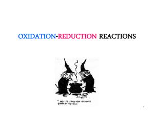 Pettinato OXIDATION-REDUCTIONREACTIONS