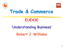 Euromaster5 Introduction to the Business Simulation Bosscat