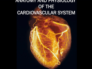 DOWNLOAD ANATOMY AND PHYSIOLOGY OF THE