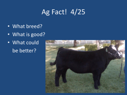 AG 12.5 - Intro to Livestock Judging