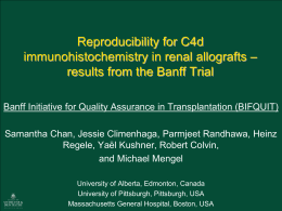 results from the Banff Trial (PPT / 2226.5 KB)