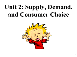 AP Micro 2-2 Shifters of Demand