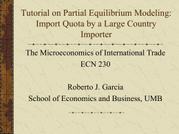 Tutorial on Partial Equilibrium Modeling: The Case of an