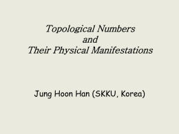 Topological Numbers and Their Physical Manifestations