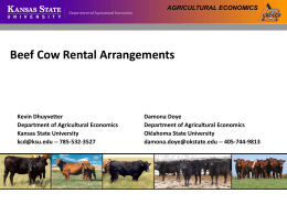 Beef cow rental arrangement -PPT