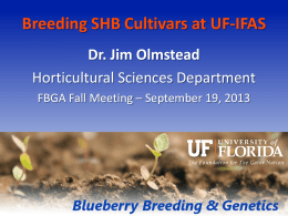 Breeding SHB Cultivars at UF-IFAS