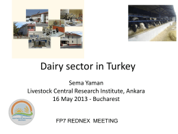 Dairy sector in Turkey - Rednex EU FP7 Project