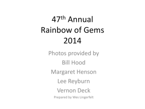 47th Annual Rainbow of Gems 2014