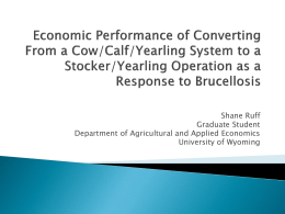 Economic Performance of Converting From a Cow/Calf/Yearling