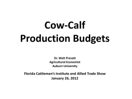 Cow-Calf Production Budgets