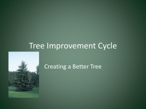 Tree Improvement Cycle - Kenan Fellows Program