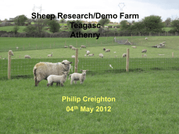 Teagasc Sheep/Research Demo Farm