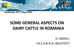 General aspects of Romanian dairy cattle sector