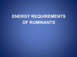 Energy Requirements of Ruminants (2012)