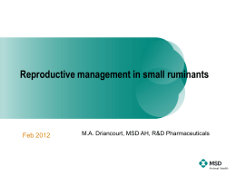 Reproductive management in small ruminants