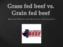 Grass fed beef vs. grain feed beef