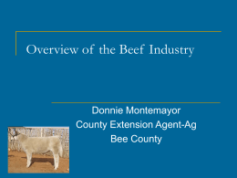 Overview of the Beef Industry
