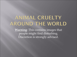 Animal Cruelty Around The World